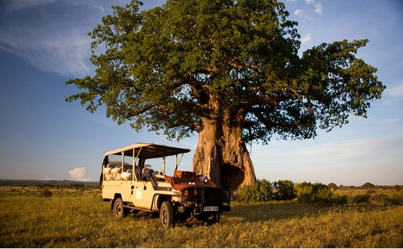 Jeep, Ruaha National Park