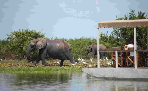 River cruise, Tanzania