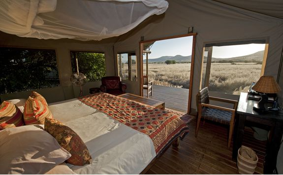 desert rhino camp interior