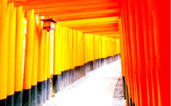 Torii gates at Fushimi Inari Shrine in Kyoto