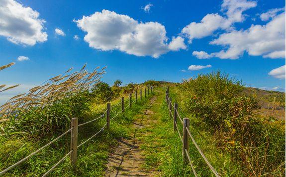 Walking trail on Mount Usu