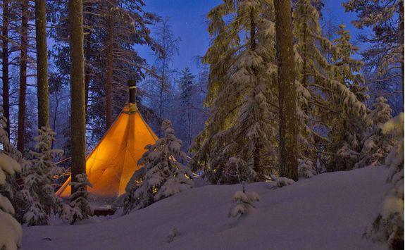 aurora safari camp tent
