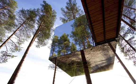 treehotel glass house