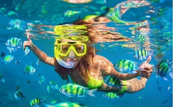 Snorkelling in the Hawaiian Coral Reef