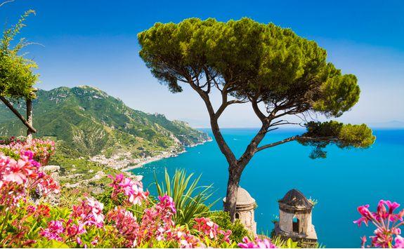 amalfi flowers