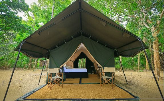 Leopard Trails Tent