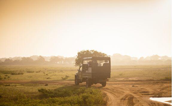 A safari jeep in yala