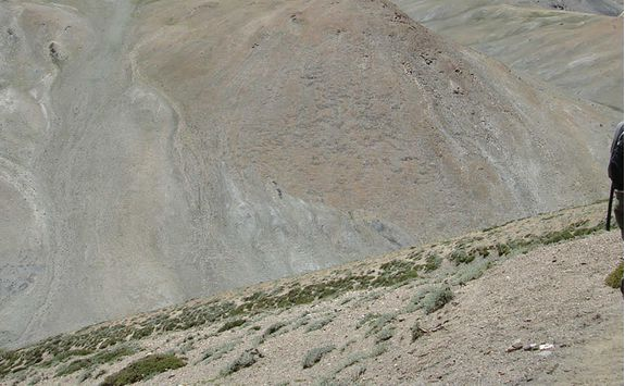 Trekking, Ladakh mountains