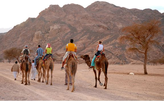 desert_exploration_with_camels