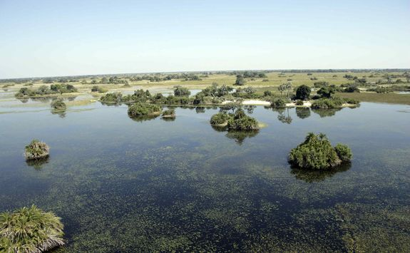 The Okavango Wetlands