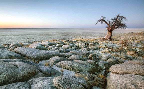 The Makgadikgadi Salt Pans