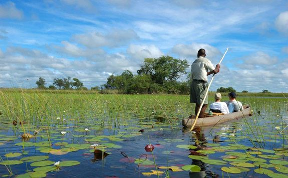Mokoro canoe in the Okavango Delta