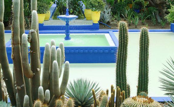 Marjorelle Garden, Marrakech