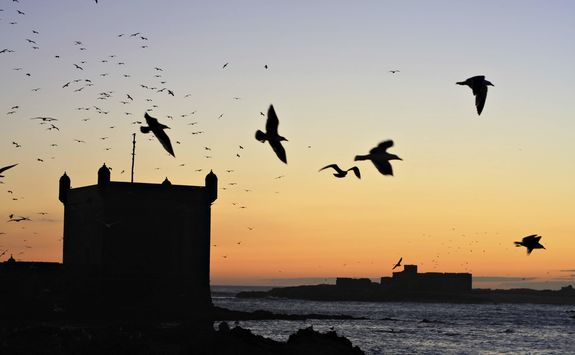 Sunrise in Essaouira