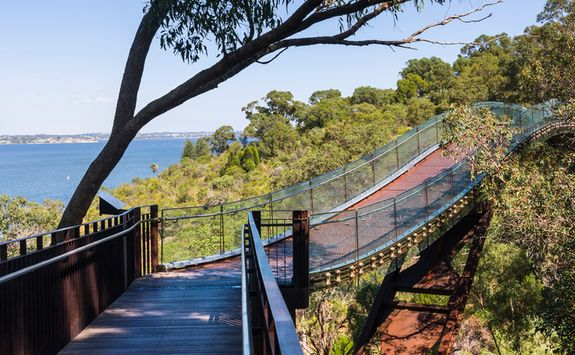 Bridge in Perth - Kings Park