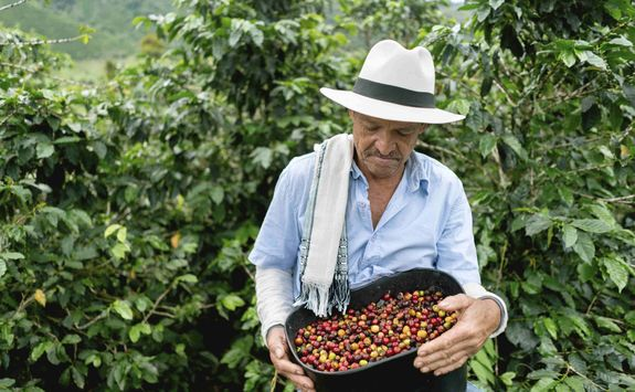 Farmer with coffee beans
