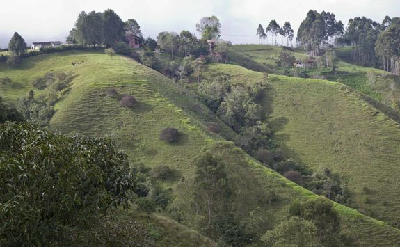Green hills of Armenia