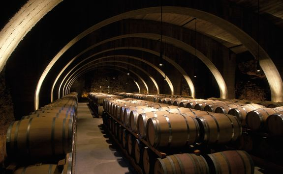 Barrels of wine in cellar