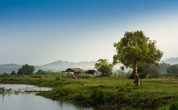 Rurual cottage