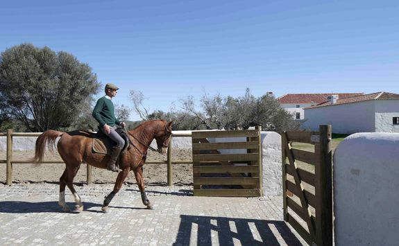 Horse Riding, Portugal