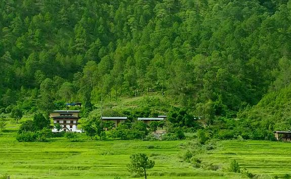 Amankora Punakha