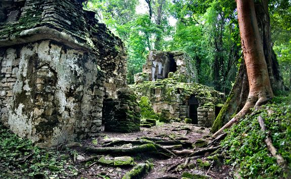 Yaxchilan ruins in a forest