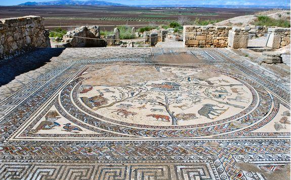 Mossaic in Volubills