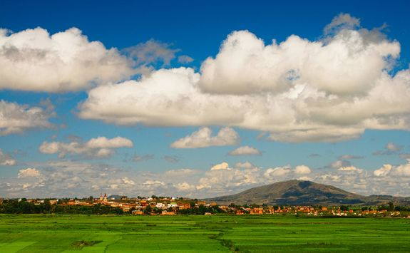 Rice fields around Antananarivo