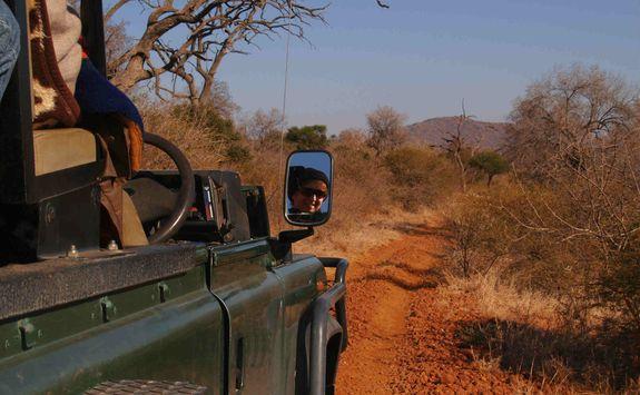 Safari vehicle in Madikwe