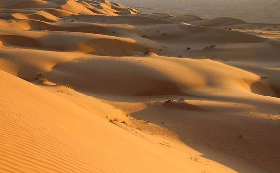 Sand dunes in the empty quarter