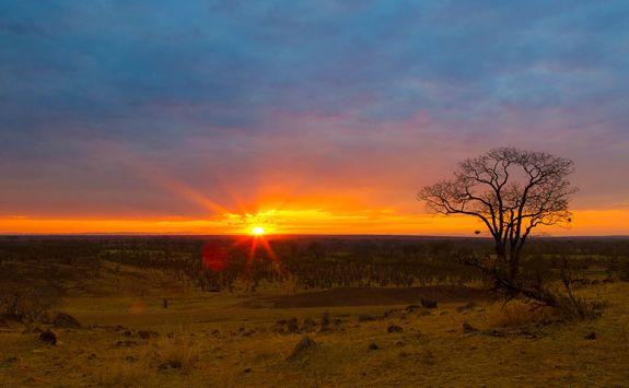 Luangwa Sunset