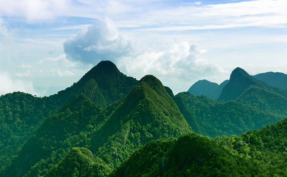 Mountains in the rainforest
