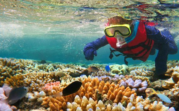 Child snorkelling in the Great Barrier Reef