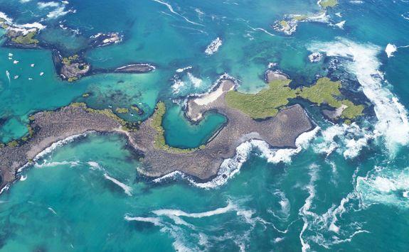 Tintoreras Islet