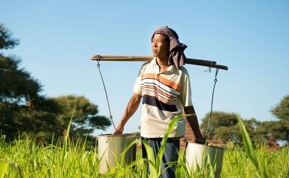 Local farmer in Bagan