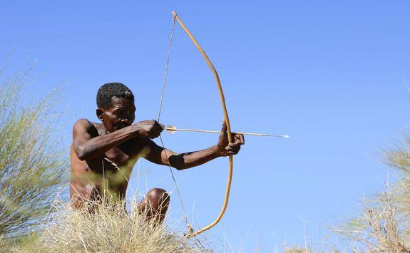 Bushman hunting