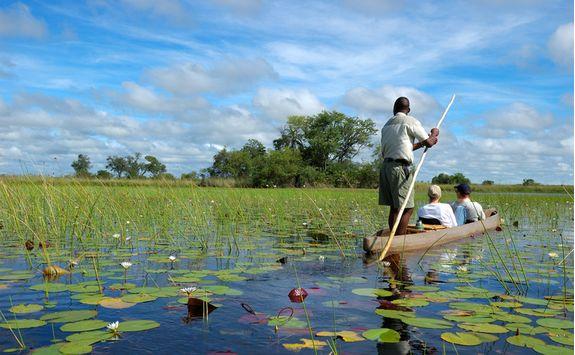 Mokoro canoeing in the Delta