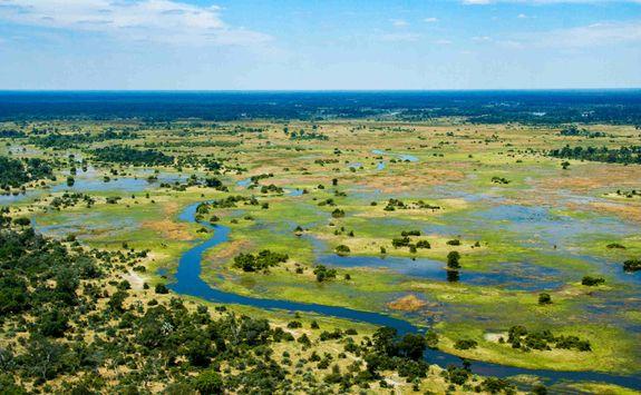 View across the Okavango Delta