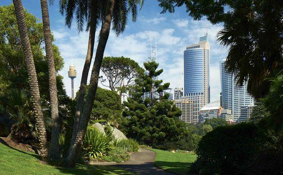 Sydney botanical garden