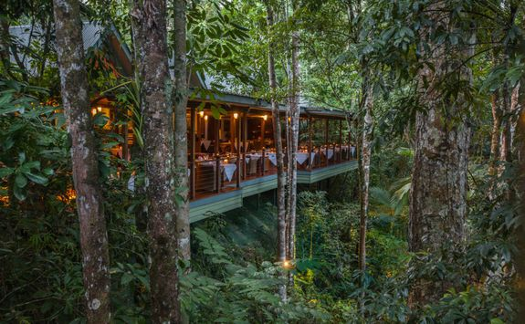 treehouse-restaurant