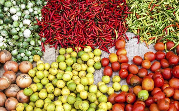 Chillies and tomatoes