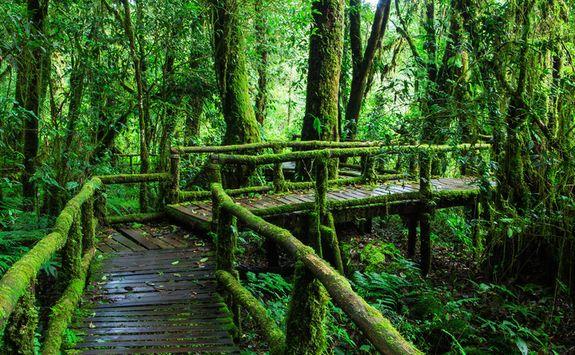ang ka trail