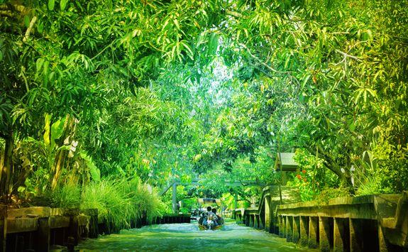 bangkok green river