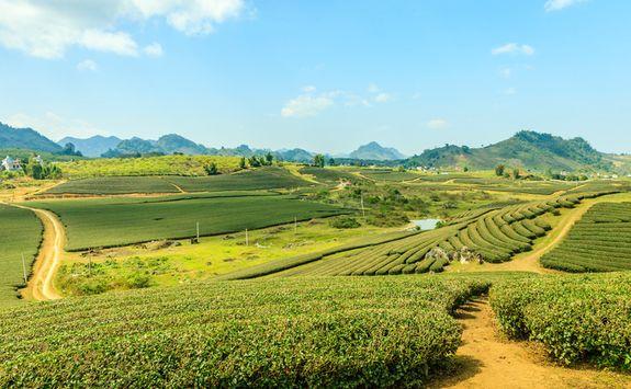Mai Chai valley