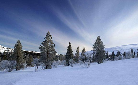 Finnish lapland scenery