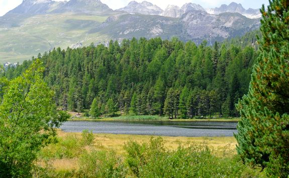 Lake Staz and mountains