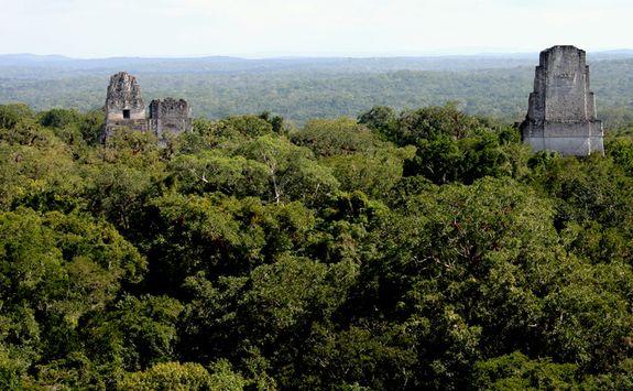 Mayan temple Tikal