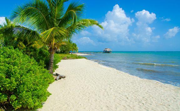 Beach, Belize