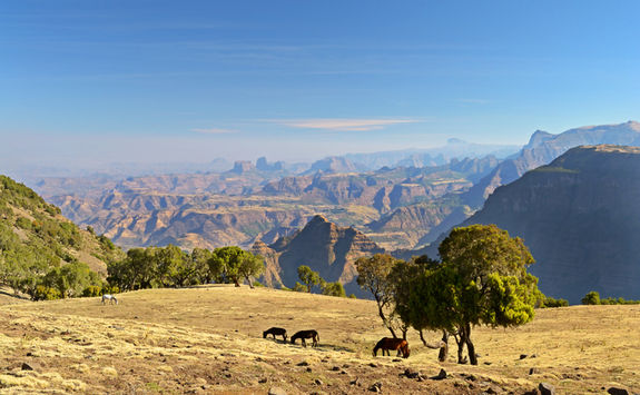 Panorama of Simien Mountains