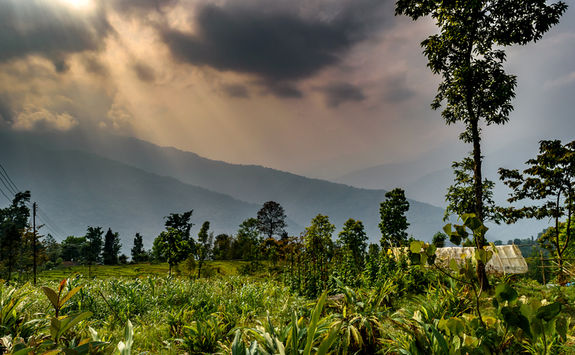 Kalimpong way, Darjeeling
